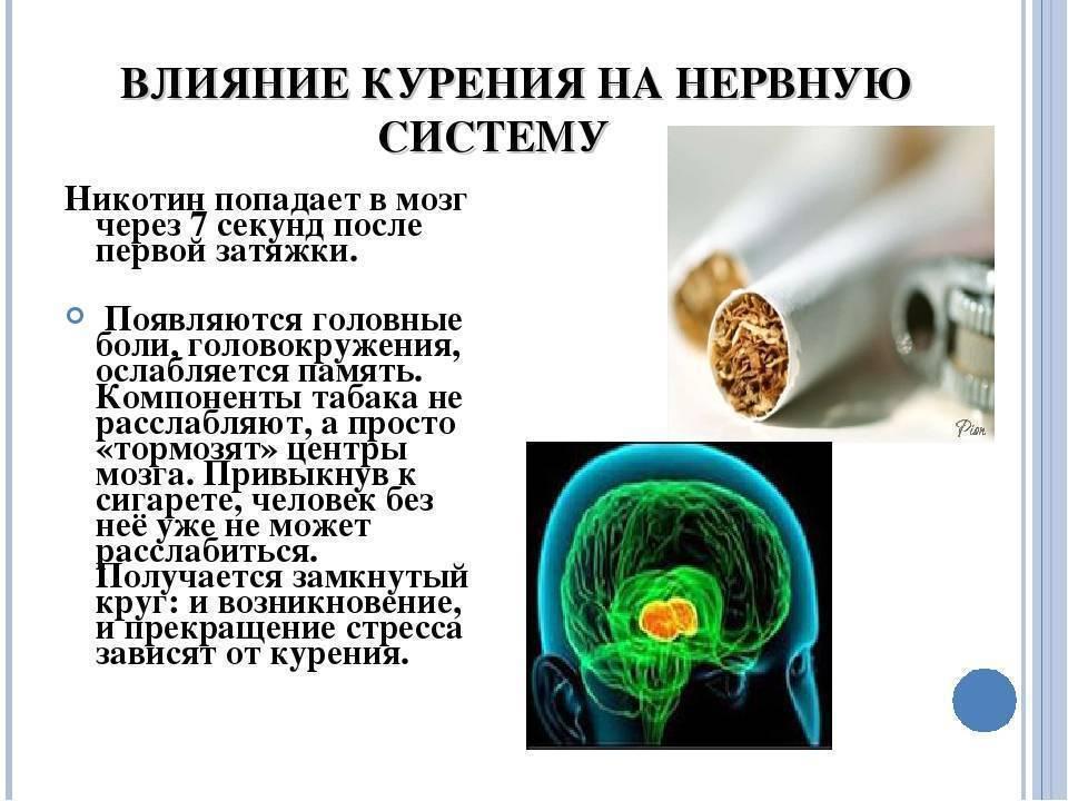 Здоровый портал: борьба с вредными привычками. что будет мозг бросить курить