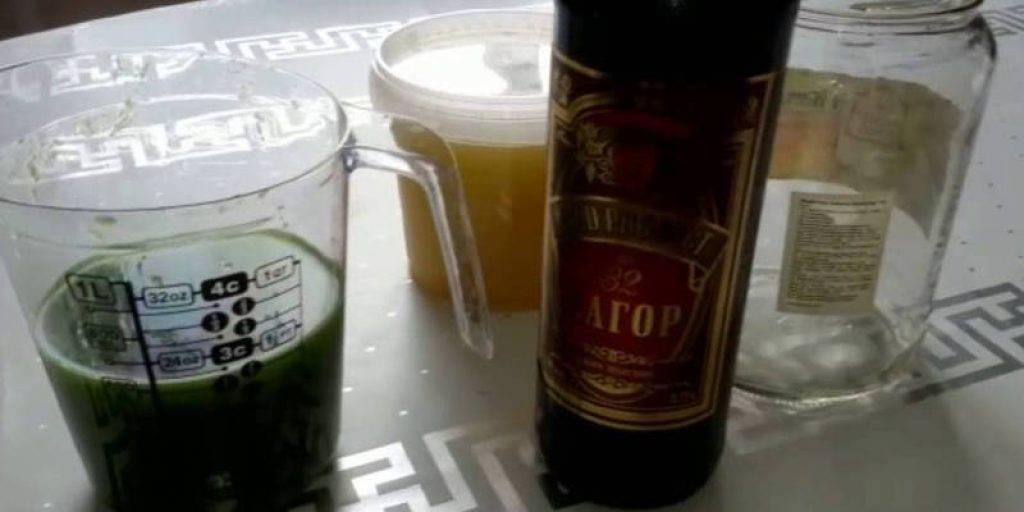 Лучшие настойки алоэ – рецепты и советы с использованием спирта