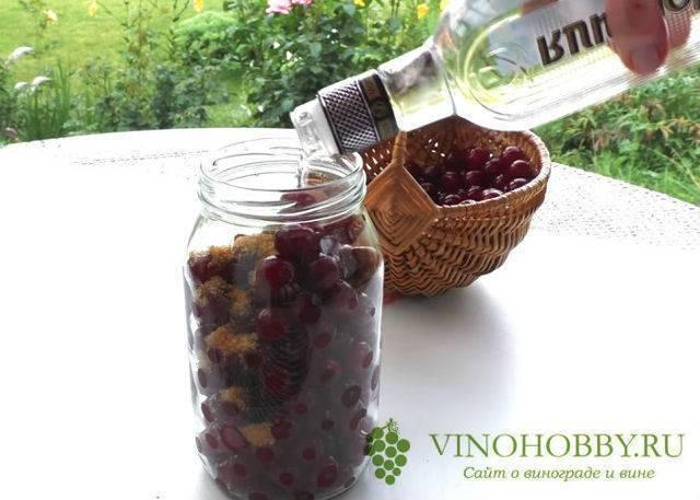 ✅ как сделать вишнёвую настойку на коньяке в домашних условиях, сколько градусов должен иметь напиток - tehnoyug.com
