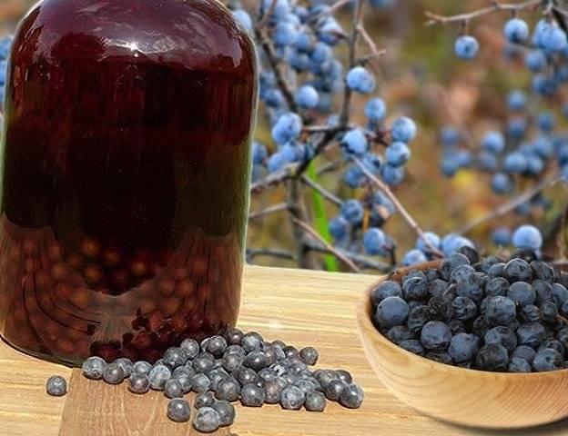 Наливка и ликер из винограда: 7 рецептов в домашних условиях
