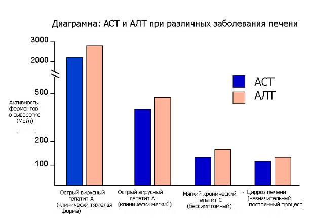 Алт и аст при гепатите с: какие должны быть показатели?