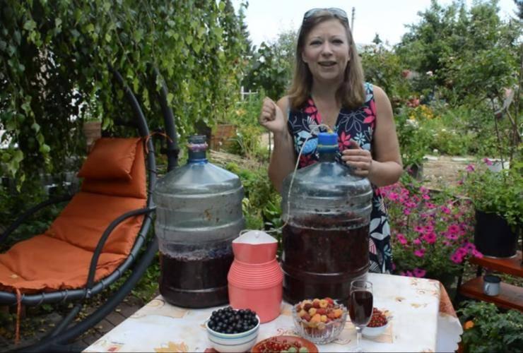 Дегустируем вино из крыжовника. приготовление дома по рецепту
