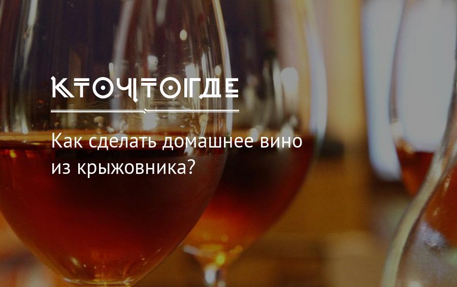Вино из крыжовника в домашних условиях, рецепты и советы
