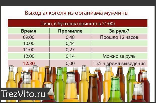 Выпил литр пива когда можно за руль