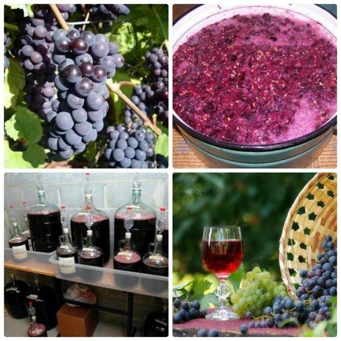 Вино из винограда лидия