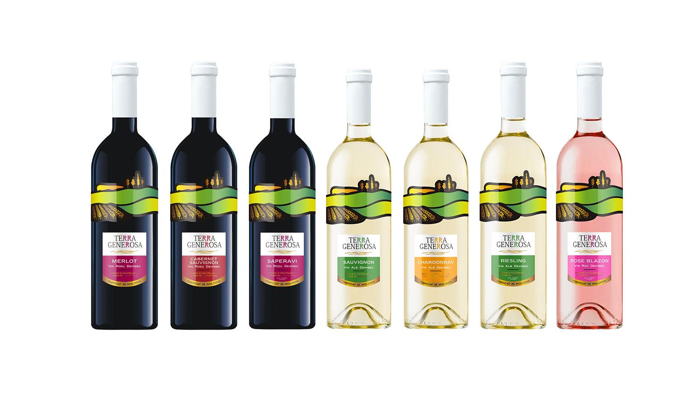 Молдавское виноделие — история и современность