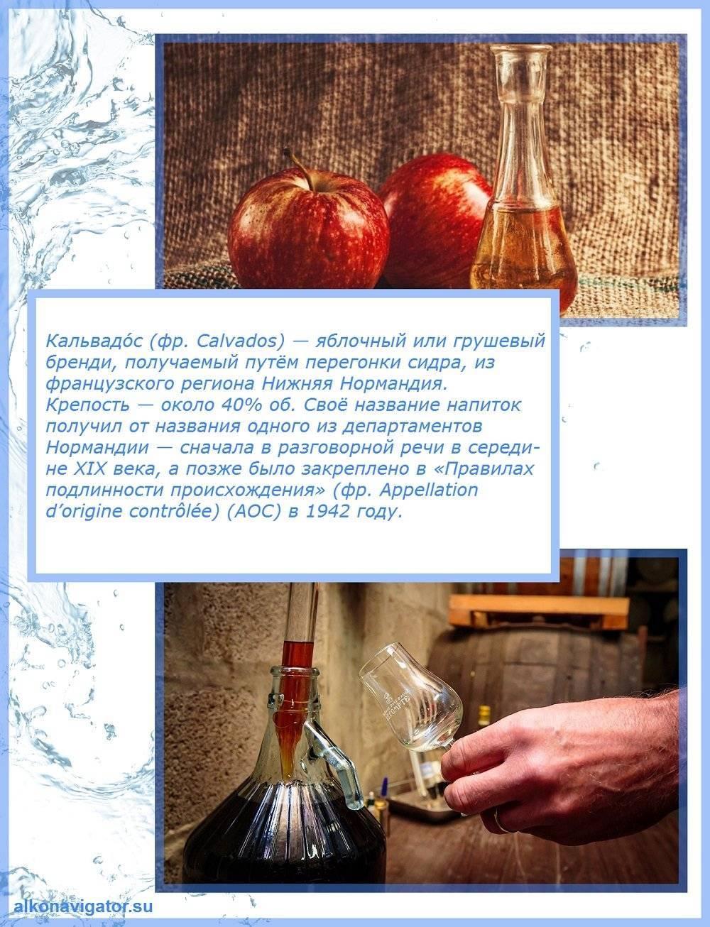 Рецепты кальвадоса в домашних условиях из яблок: лучшие варианты