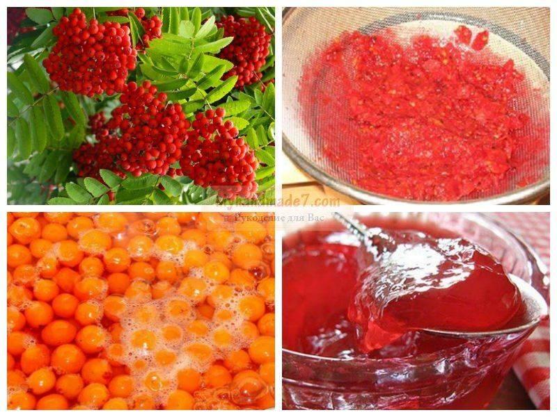 Заготовки из рябины красной на зиму: полезные рецепты