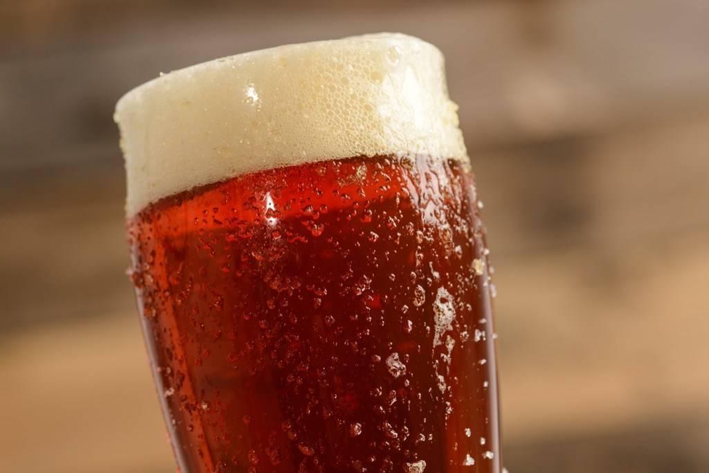 Обзор видов порошкового пива