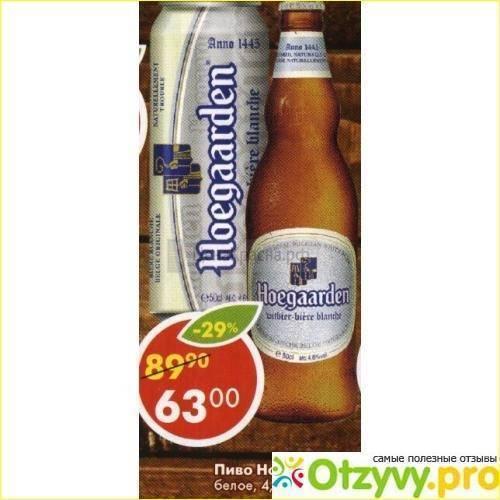 Пиво hoegaarden («хугарден») - обзор пива и его основных характеристик (видео 125 фото)