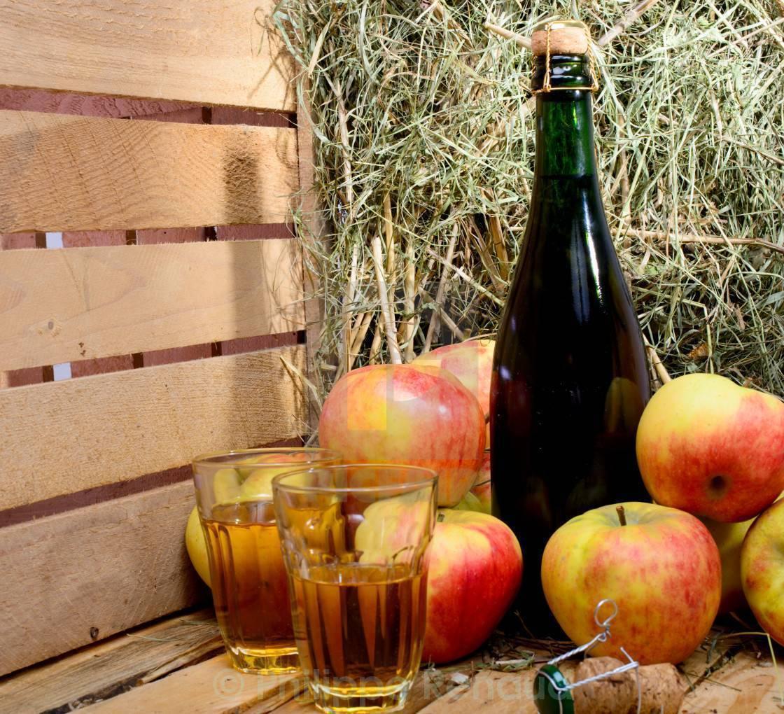 Вино из абрикосов в домашних условиях