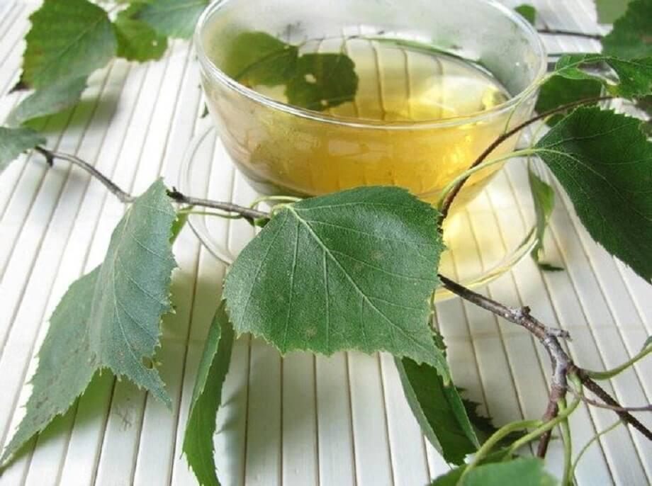 Настойка из березовых почек на водке:сила природы для души и тела