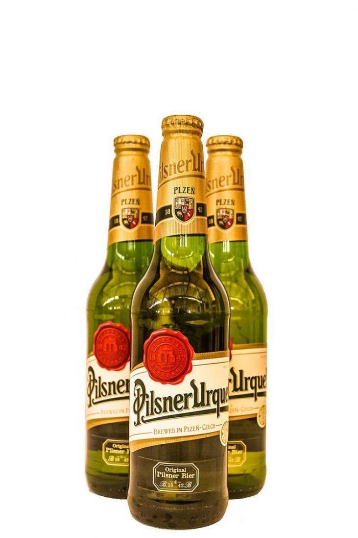 Американское пиво: история американского пива, бренды, сорта и марки