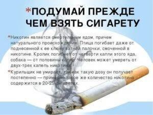 Необъяснимо, но факт: причины того, зачем в новой пачке переворачивают первую сигарету