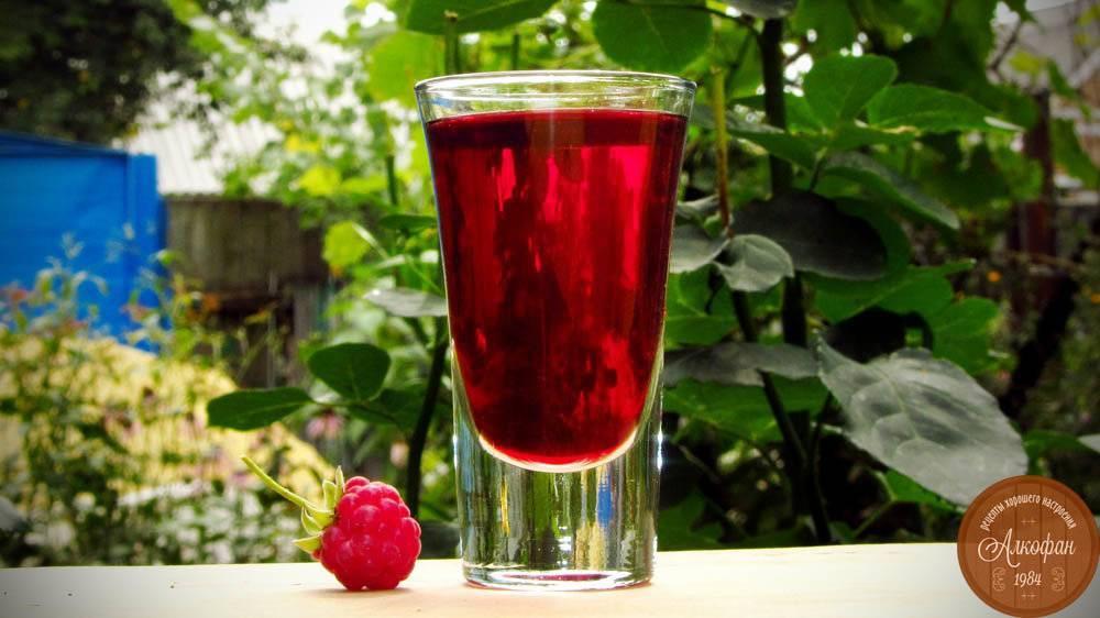 Малиновый ликер: рецепты своими руками, с чем и как пить