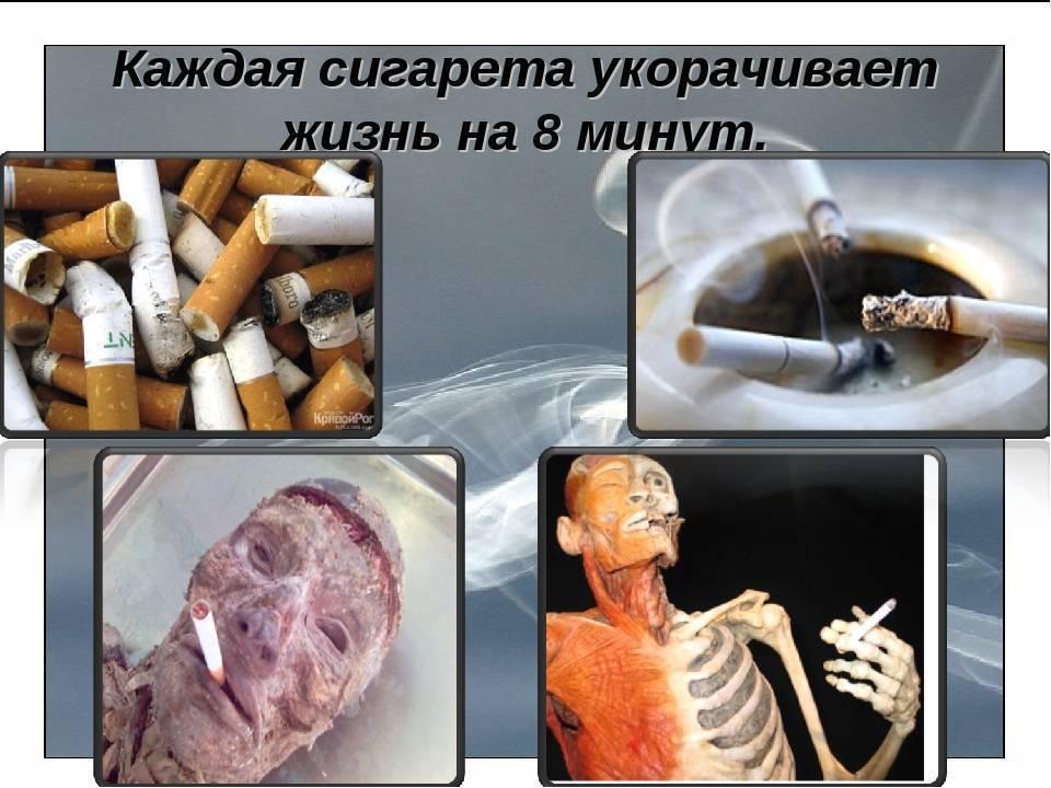 Какой вред оказывает курение и алкоголь на организм человека
