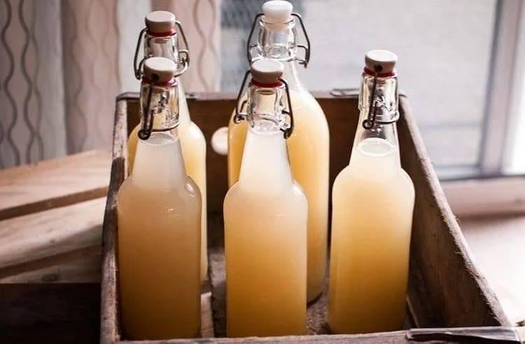 Имбирное пиво: рецепт приготовления в домашних условиях алкогольного и безалкогольного напитка, известные марки пива с имбирем