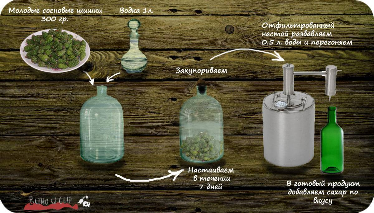 Шишки от инсульта: когда собирать сосновые и еловые для лечения, как принимать настойку на водке и другие народные средства, а также рецепты