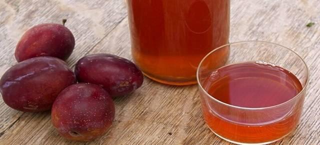 Вино из слив - простые рецепты в домашних условиях из компота, варенья и свежих фруктов
