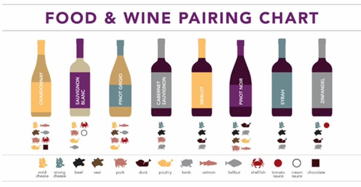 Какое вино выбрать к мясу? большой винно-гастрономический гид