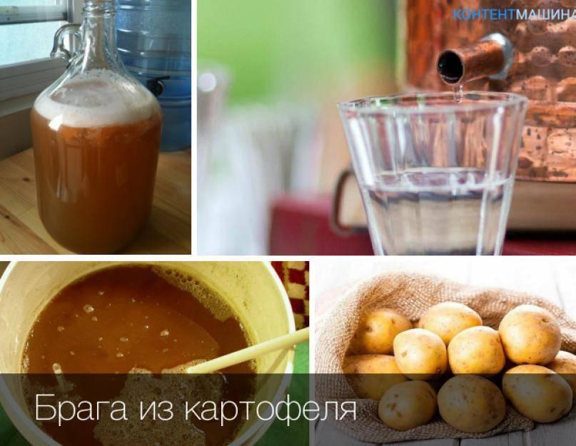 Как сделать самогон из картофеля в домашних условиях - 2 варианта браги