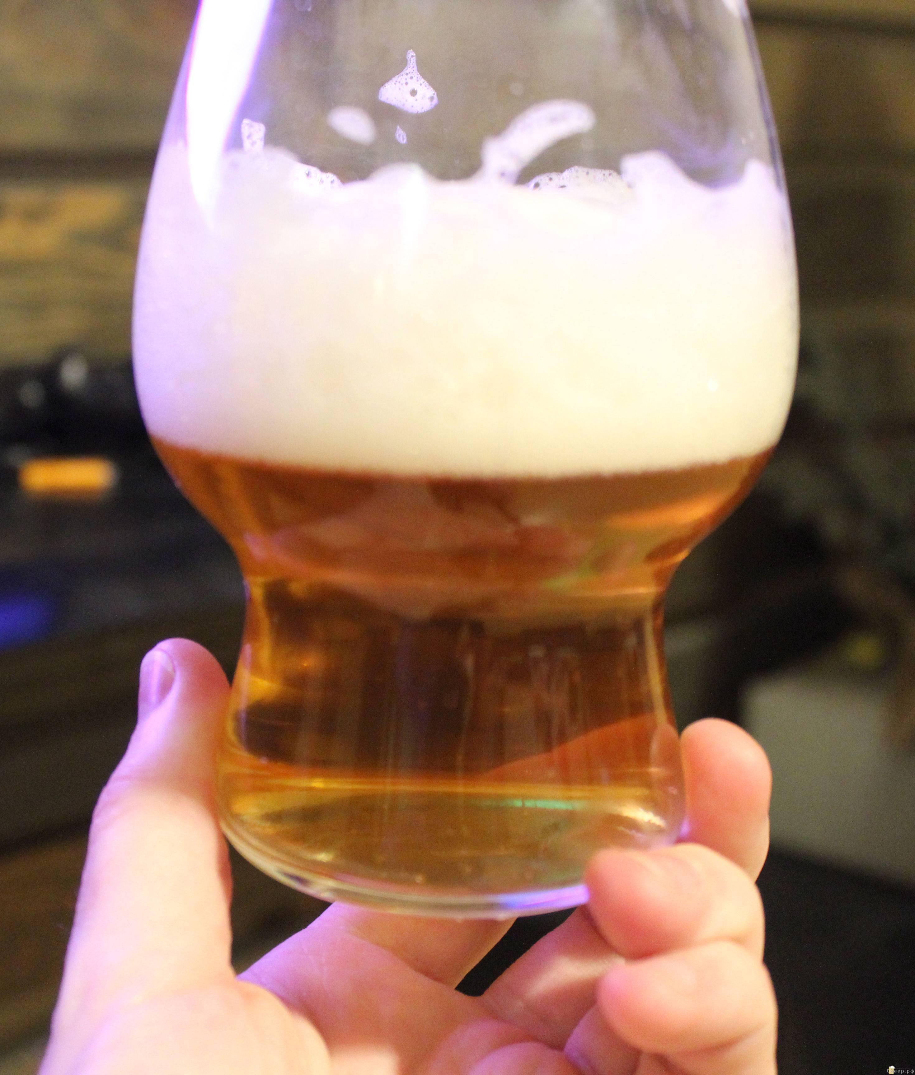 Брожение пива: бродильная емкость, верховое и низовое брожение, сколько бродит пиво, температура
