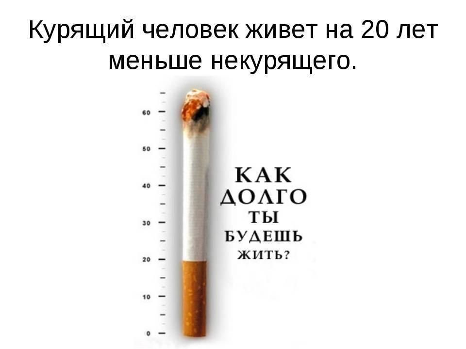 Сколько можно курить сигарет в день без вреда для здоровья