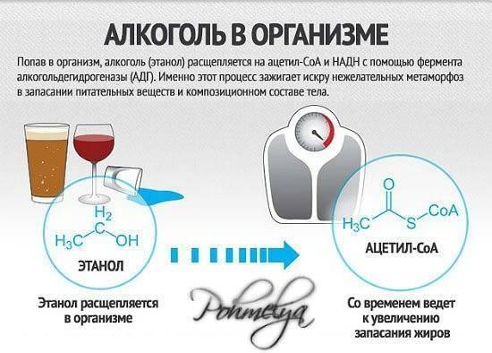 Как быстро вывести алкоголь из организма в домашних условиях: 25 способов