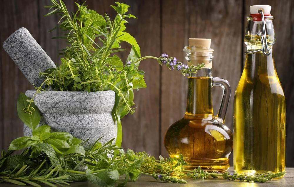 Полезные, лечебные свойства и противопоказания чабреца. рецепты