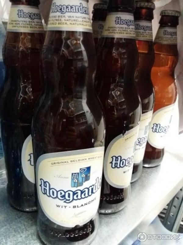 """Бельгийское пиво """"хугарден"""": описание, отзывы :: syl.ru"""
