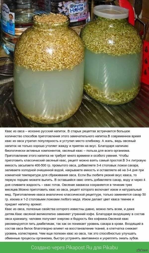 Рецепт кваса в домашних условиях: как приготовить на ржаной закваске
