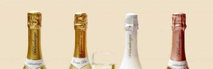 Приготовление шампанского в домашних условиях – 5 рецептов!
