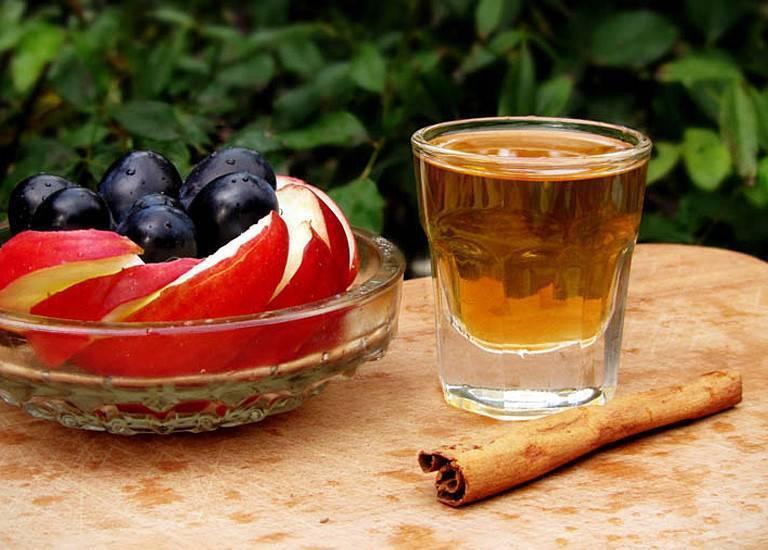Лучшие рецепты приготовления бехеровки на самогоне