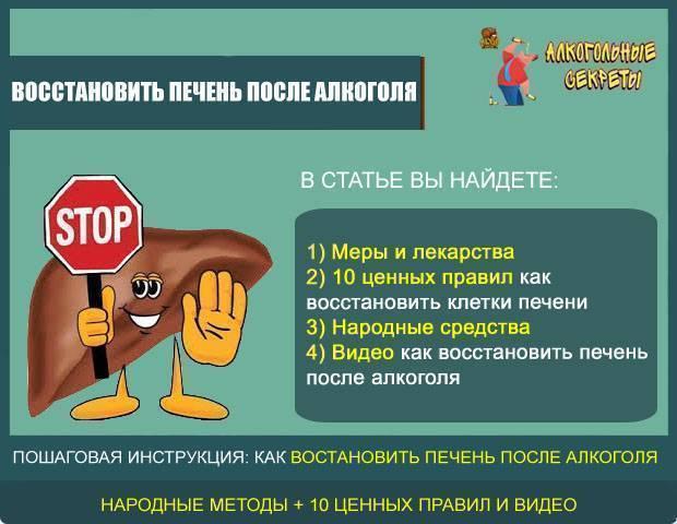 Лекарство для печени после алкоголя - лучшее лекарство для восстановления и профилактика