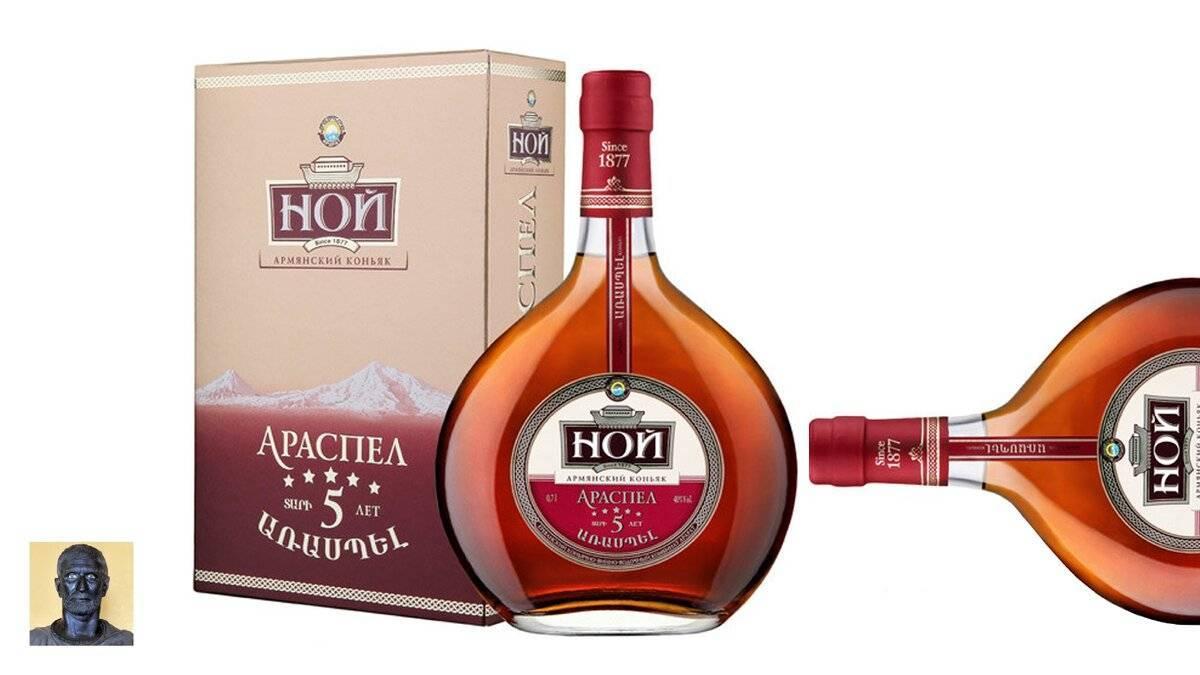 Коньяк ной: обзор напитков бренда, рекомендации по выбору