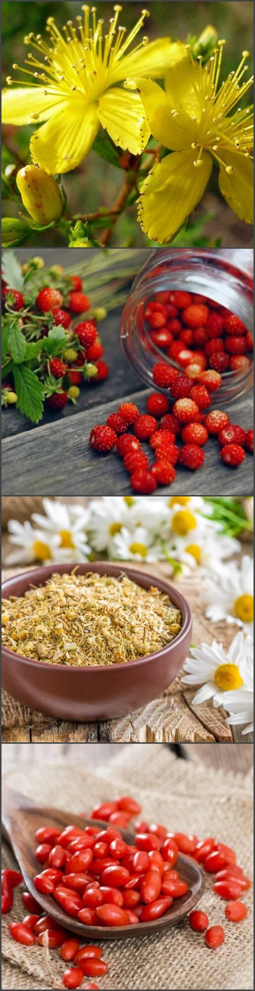 Лечение цирроза печени народными средствами - самые эффективные: народные средства и травы при циррозе