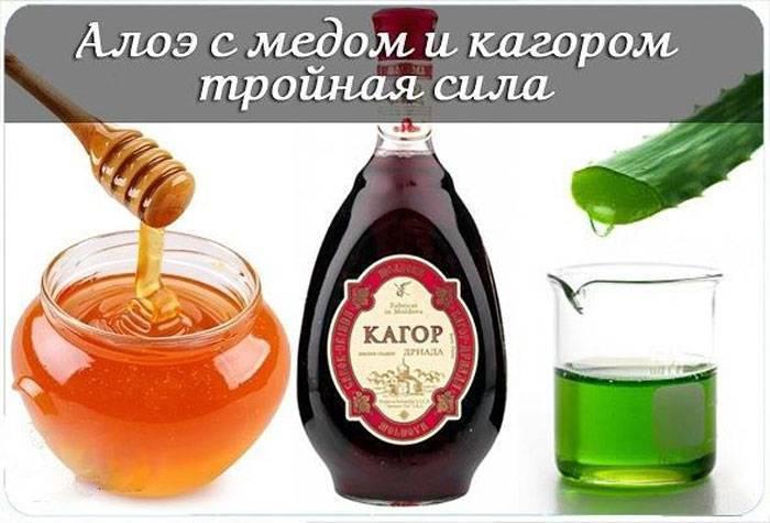 Алоэ с вином: рецепт с медом и красным видом спиртного, приготовление и польза настойки, применение как лекарства