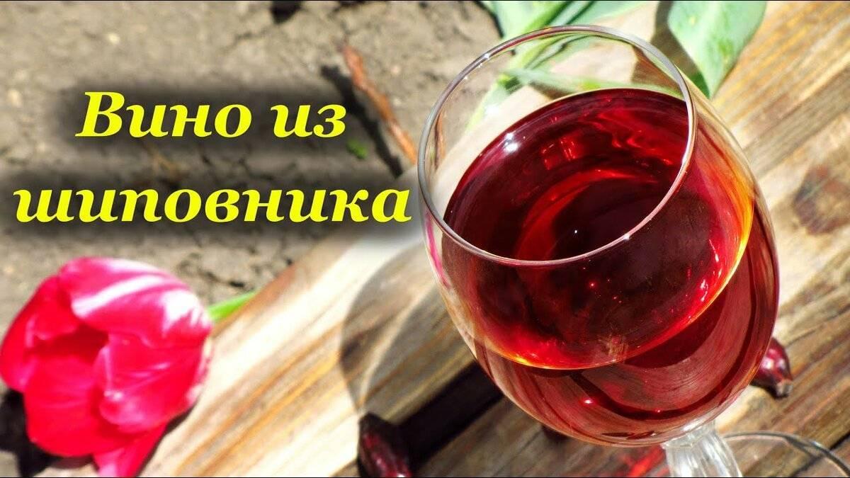 Как приготовить вино из шиповника
