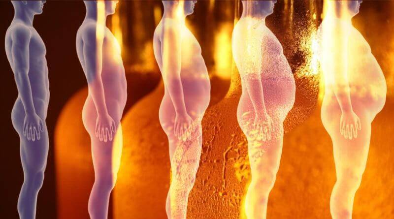 Женский гормон в пиве содержится ли, какой и сколько?