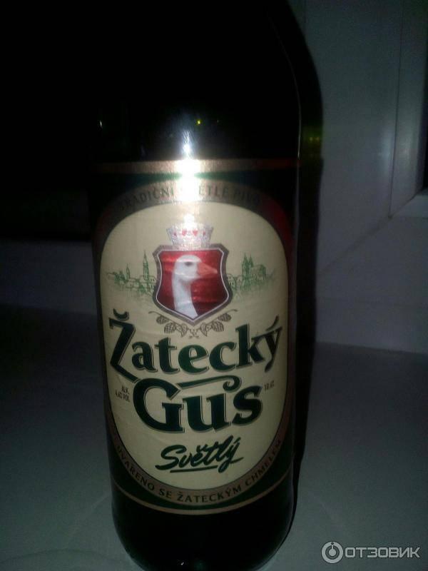 Žatecký gus («жатецкий гусь»)