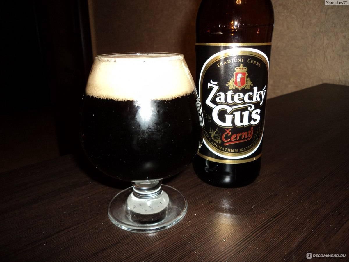 Пиво светлое жатецкий гусь чешский пастеризованное