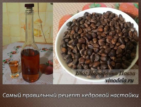 Вкусные рецепты самогона на кедровых орехах