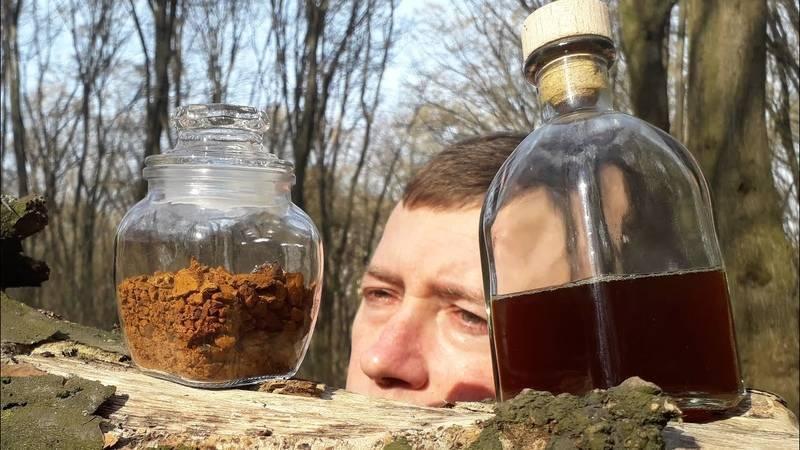 Рецепты чаги на водке