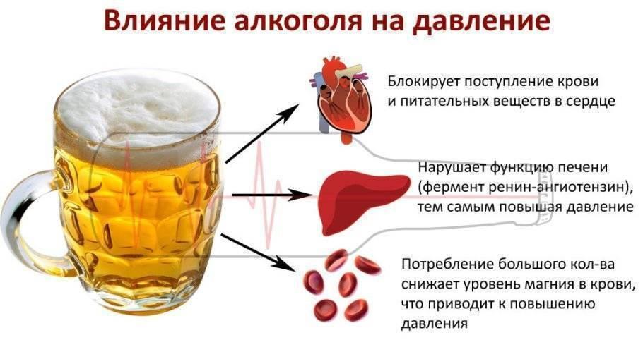 Действие коньяка на артериальное давление человека — повышает или понижает натиск крови на сосуды? Мнения врачей