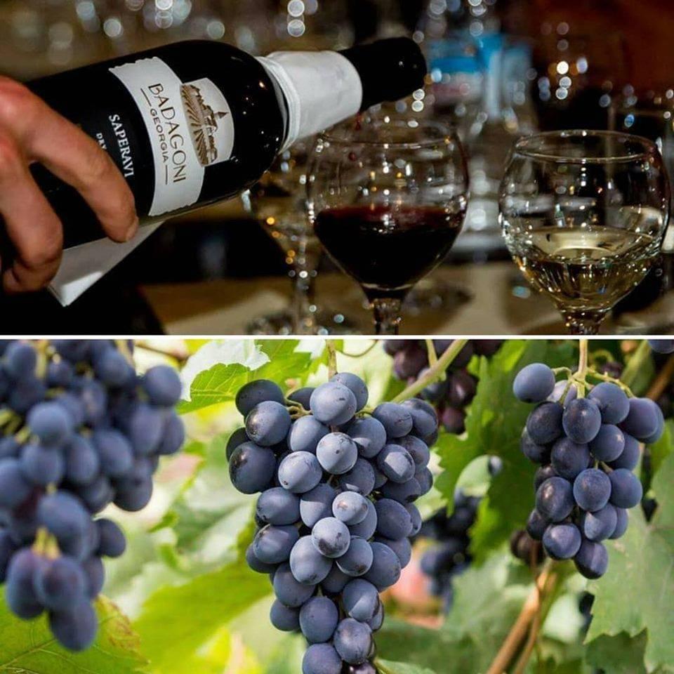 Австралийское вино шираз (shiraz) и одноименный сорт винограда