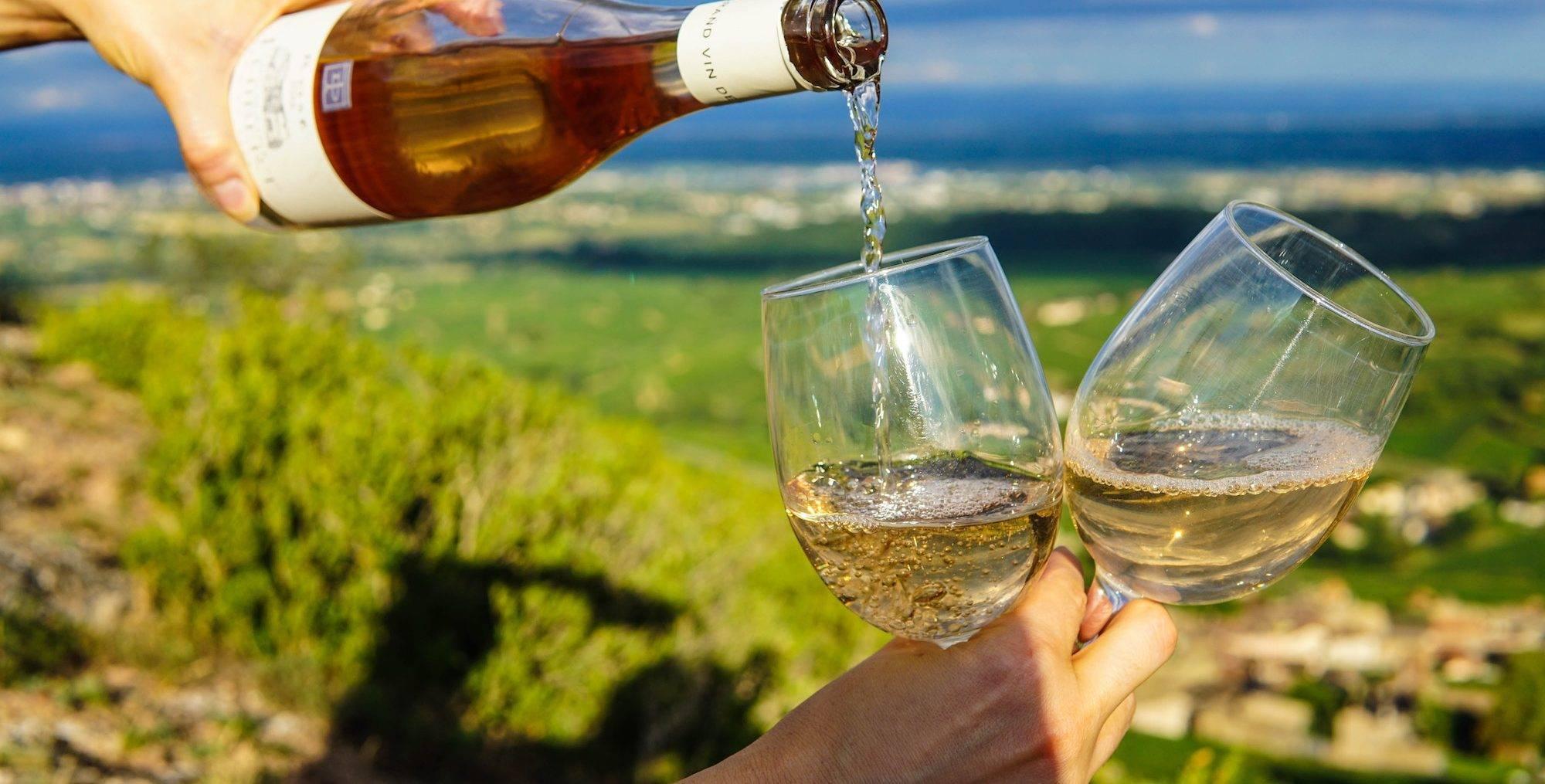 Что же такое биодинамическое вино? - mixednews
