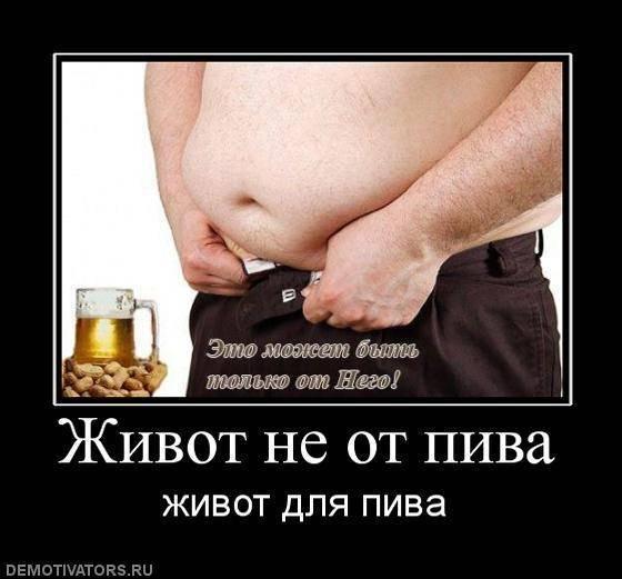 Толстеют ли от пива: правда о влиянии напитка на фигуру