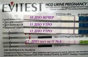 Тест на беременность после принятия алкоголя, влияют ли спиртные напитки на результаты