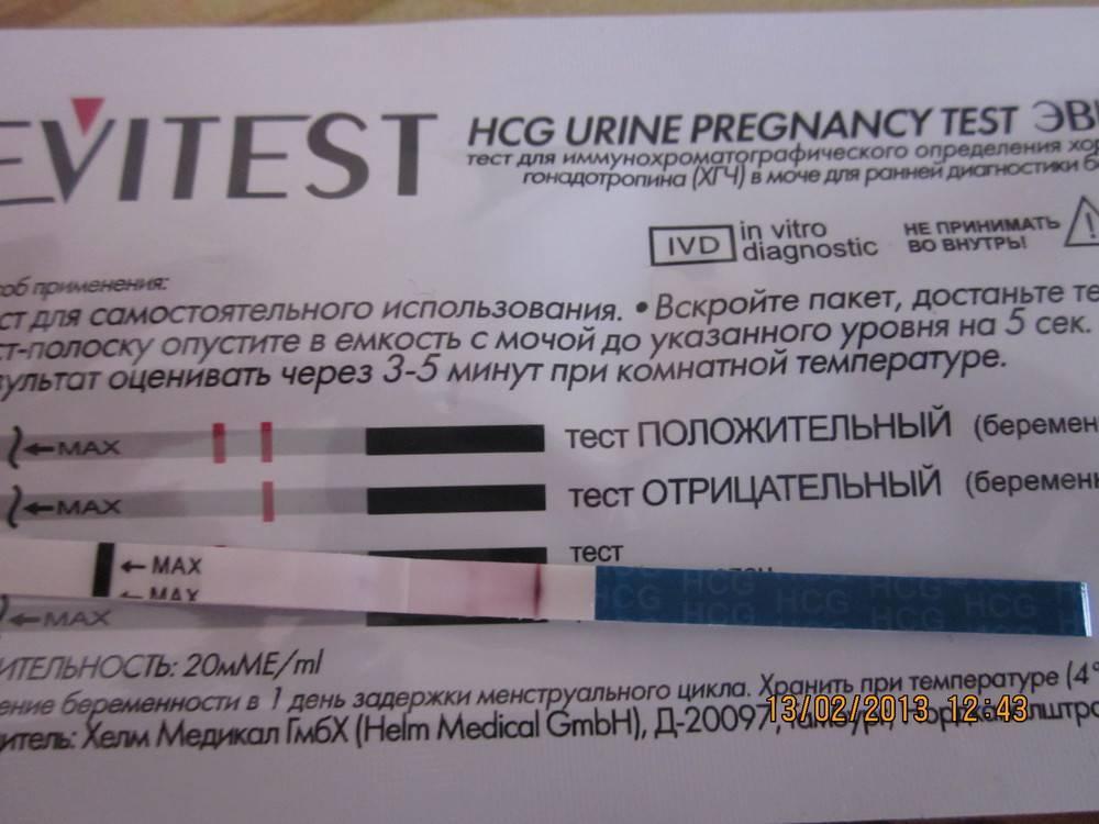Тесты на беременность. как правильно делать анализ. как долго копить мочу. каких ошибок избегать - планирование беременности. эко