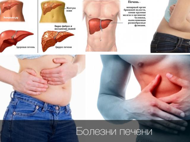 Здоровая печень: популярные рекомендации врачей